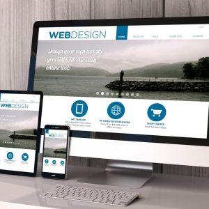 website design cropped